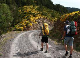 Exercice de randonnée sur tapis de course